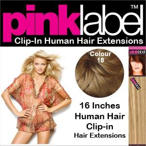 Clip in Human Hair Extensions Colour 18