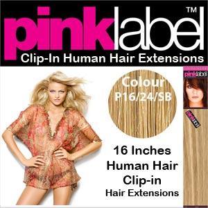 Clip in Human Hair Extensions Colour P16/24/SB
