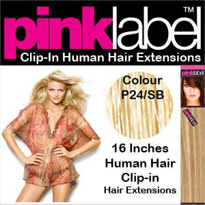 Clip in Human Hair Extensions Colour P24/SB