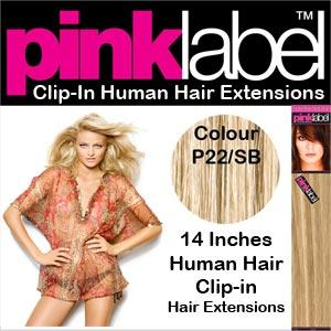 Pink Label Clip in Human Hair Extensions P22/SB