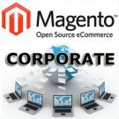 Corporate Magento Transactional Website Design Package