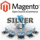 Silver Magento Transactional Website Design Package